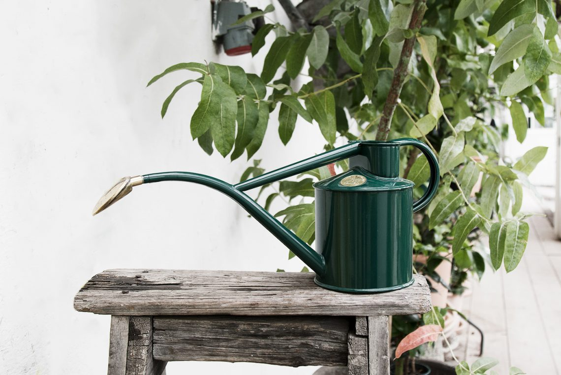 Beautiful objects for the not so green thumbs that will make them want to start gardening