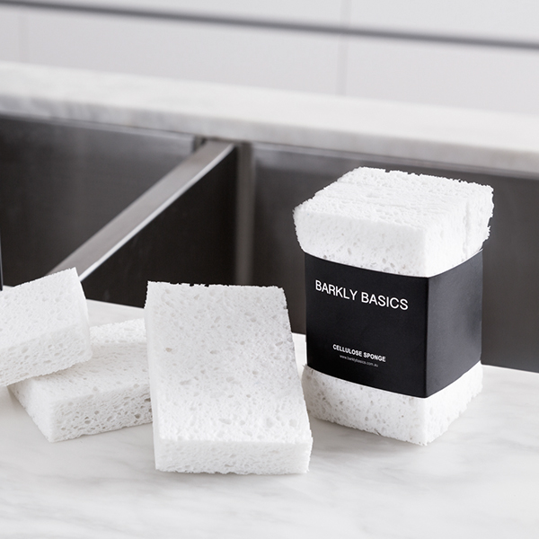 stylish sponge that will not disfiguring your kitchen