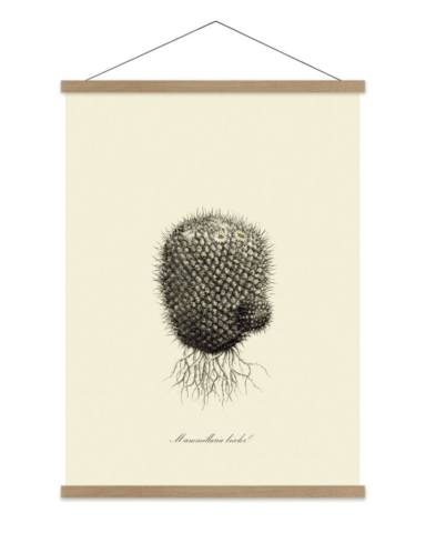 Get the look: Paris boutique hotel, Grands Boulevards - gravure wall art